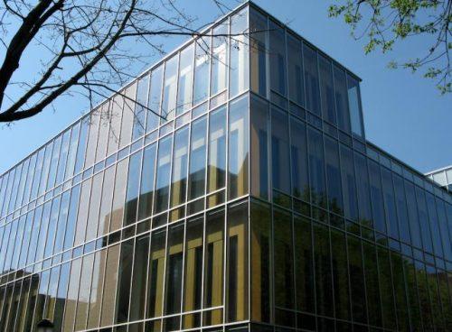 OKAWOOD | Annenberg Policy Center-erle-insert-meranti-insert